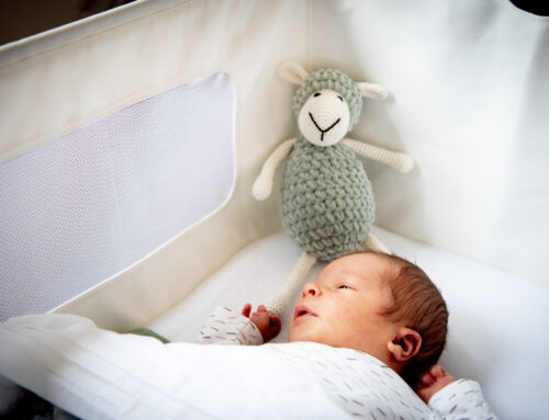 Newbornshoot Juda